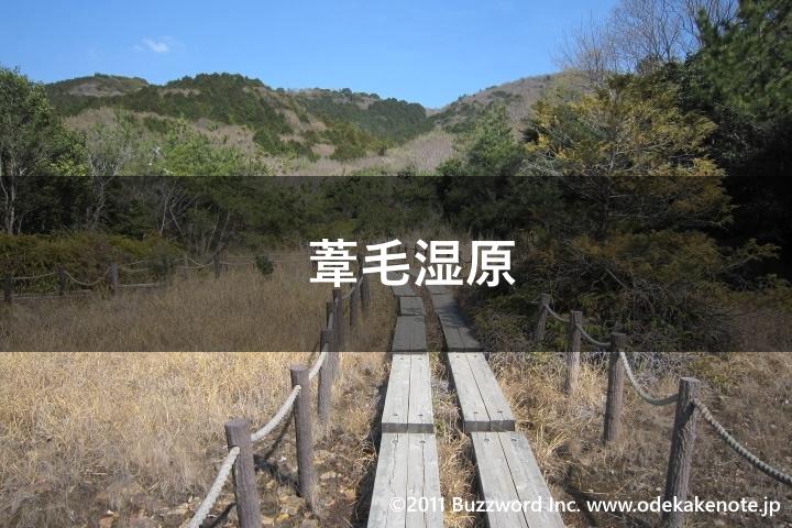 葦毛湿原に関するおでかけ情報